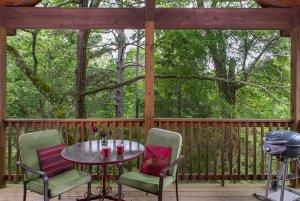 get'n squirrelly cabin patio