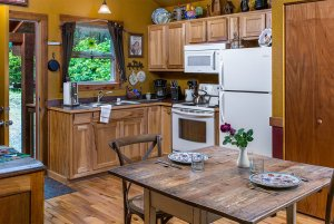moose recluse kitchen