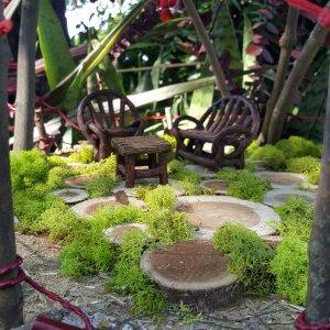 Fairy moss garden