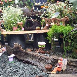 Fairy log garden