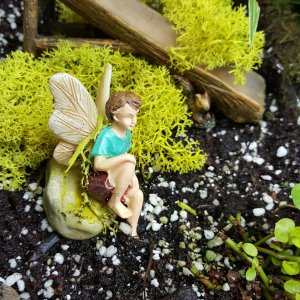 Fairy in garden
