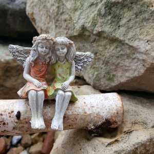 Fairies sitting on log