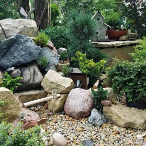 Fairy rock and evergreen garden