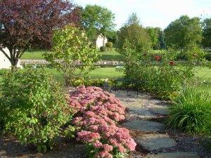 Blue stone path in garden