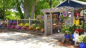 Entrance into garden center