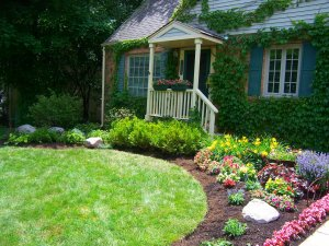 Little charming garden if front of house