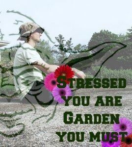 Man contemplating gardening