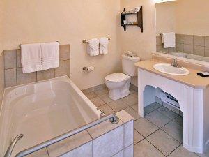 tub with grab bar