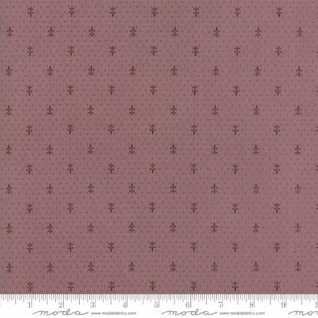 13816 16 Lavender