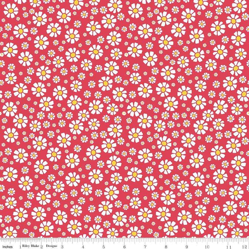 C6043_RED_Strawberry Daisy