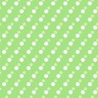 Janey Dots Light Green Y2703-20