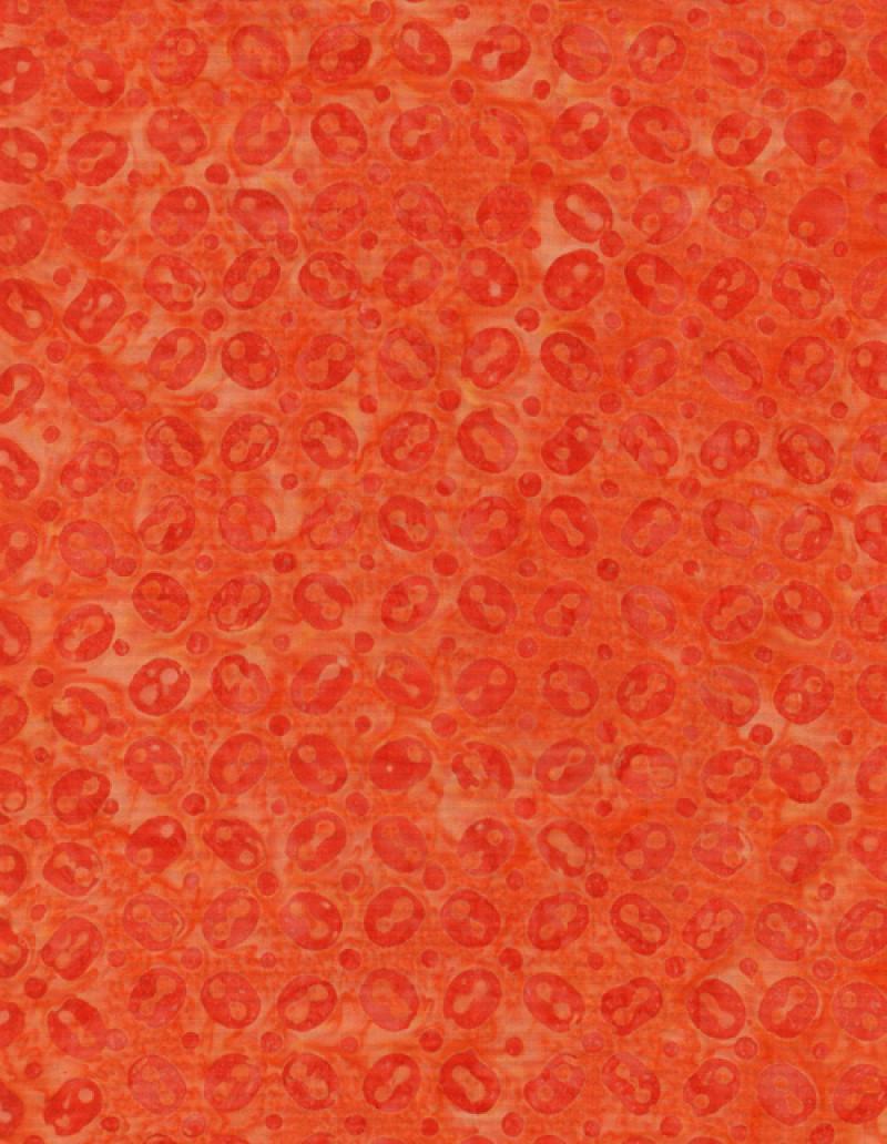 tongaconfetti-c9389-chili