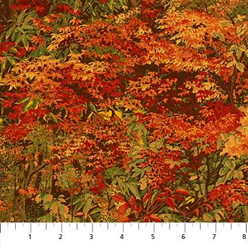 Autumn Woods Red<br/>Northcott 22849-24