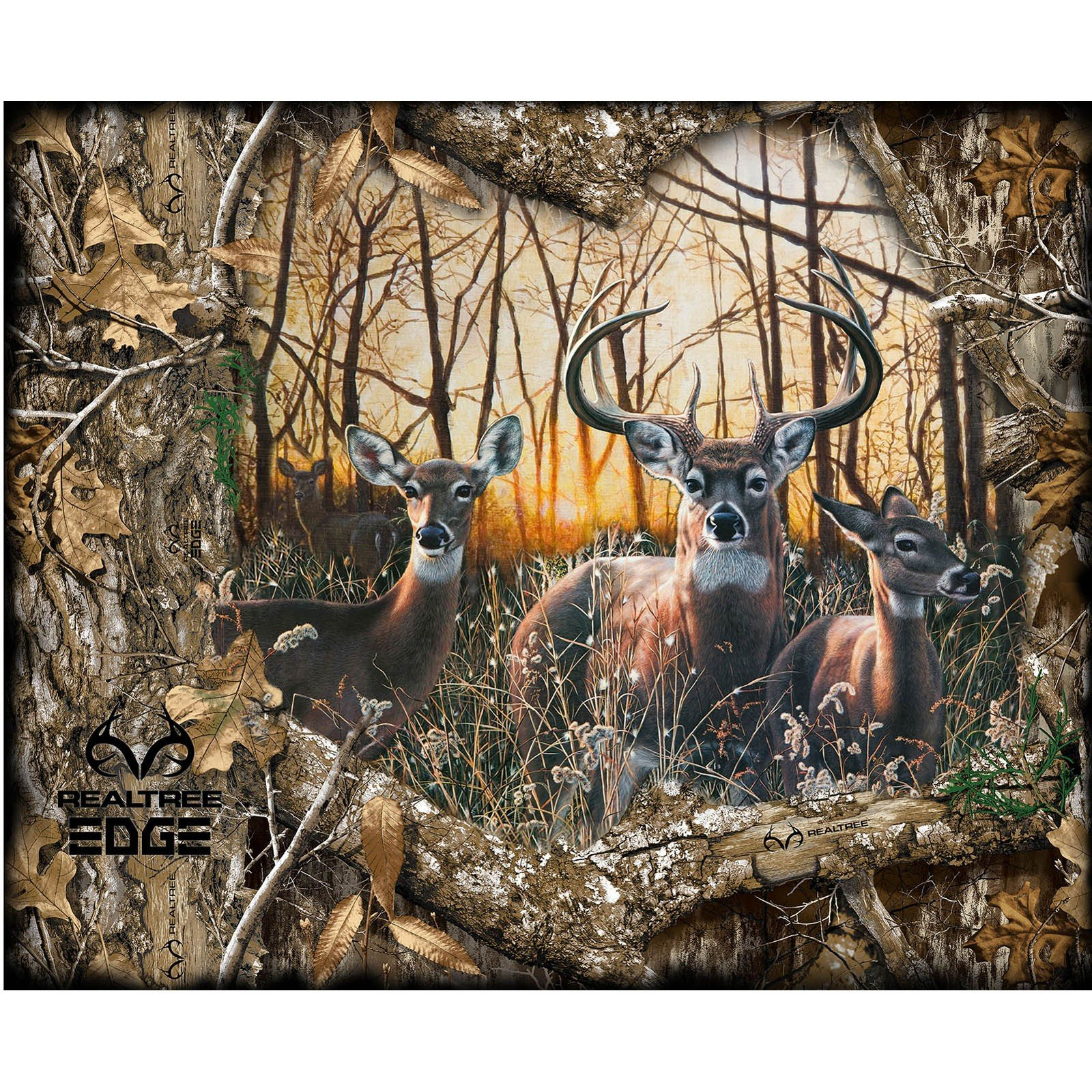 RealTree Edge Panel<br/>Print Concepts 1167