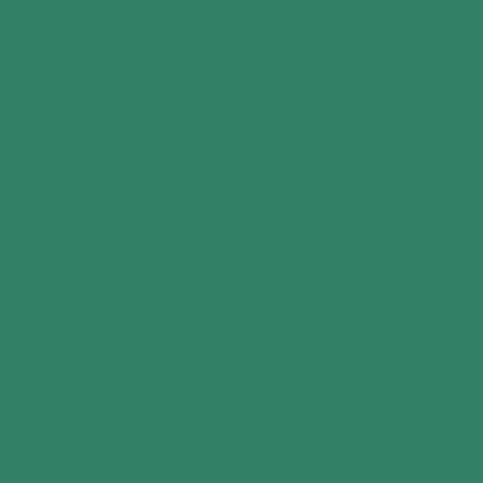 Solid - Spearmint<br/>RJR 9617-389