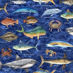 Ocean Oasis Mixed Fish Marine