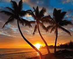 Magic Slice flexible cutting board Hawaiian Sunset