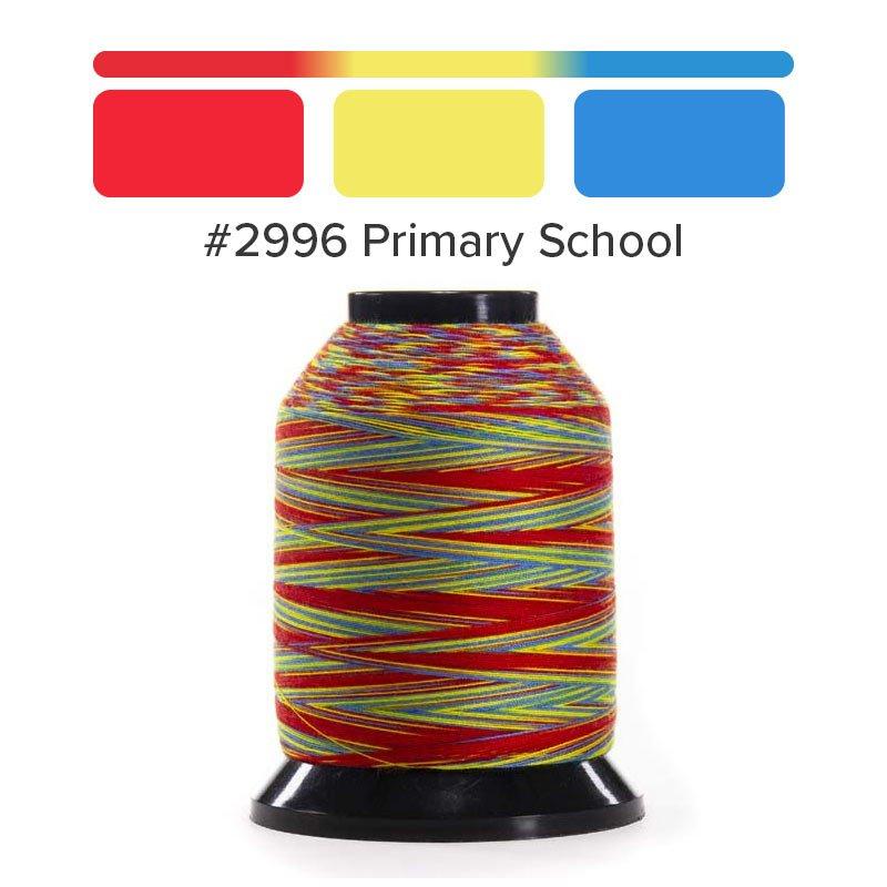 Finesse-2996 Primary School