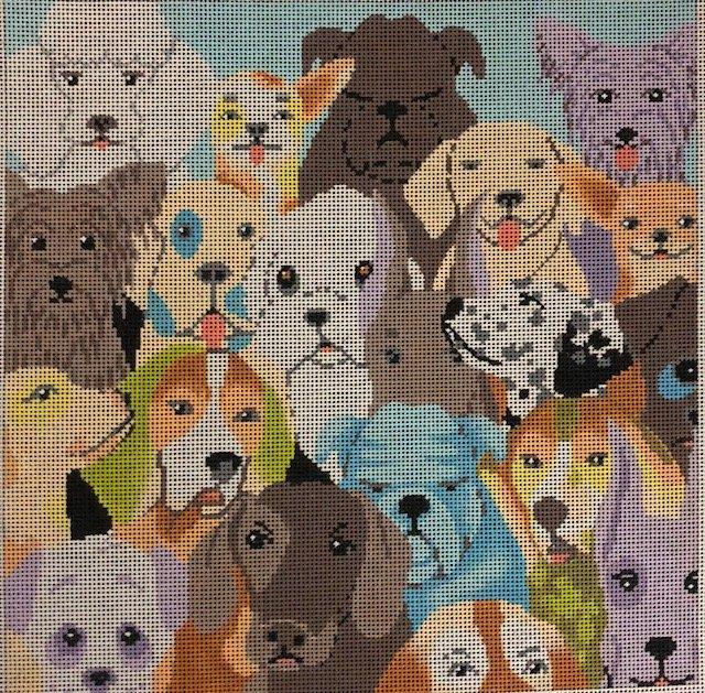 ASIT109 Many Dogs