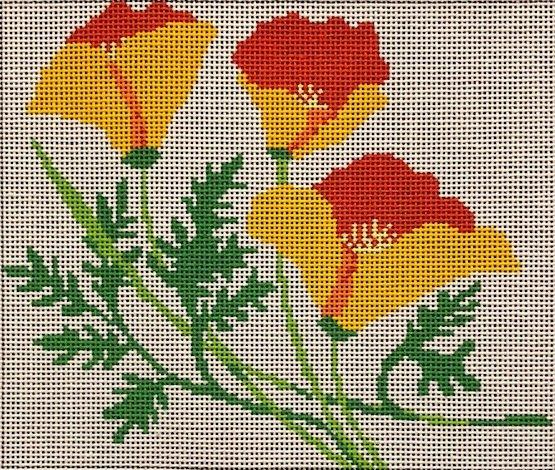 ASIT275 California Poppy