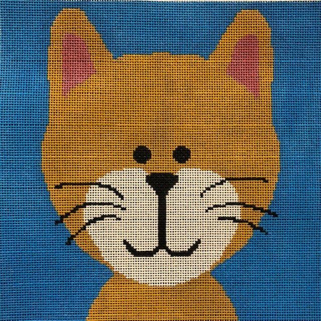 ASIT331 Kitten