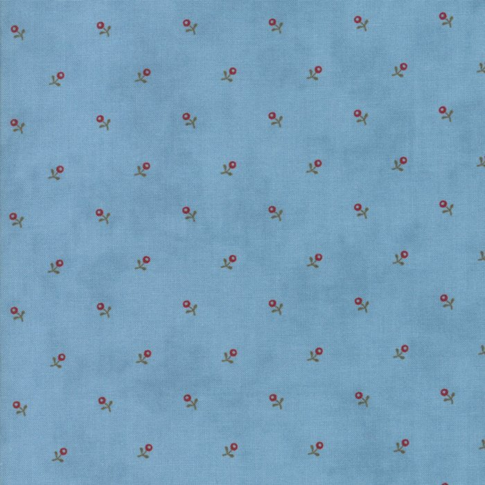 Ann's Arbor, Light Blue 14845-25