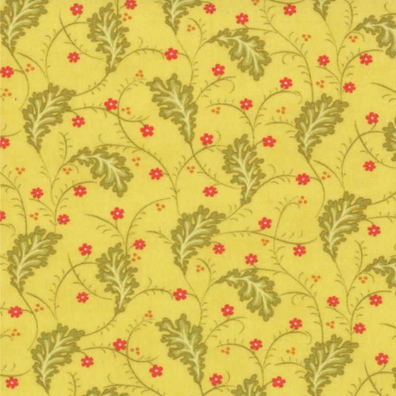 Honeysweet Ginger Vine Quince 20213-13