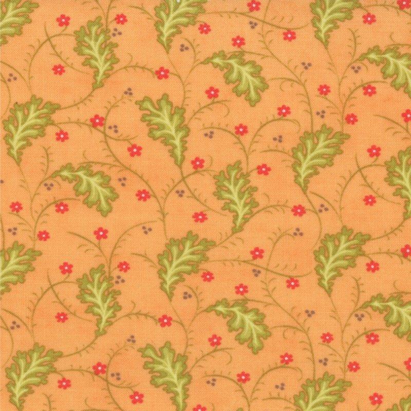Honeysweet Ginger Vine Persimmon 20213-15