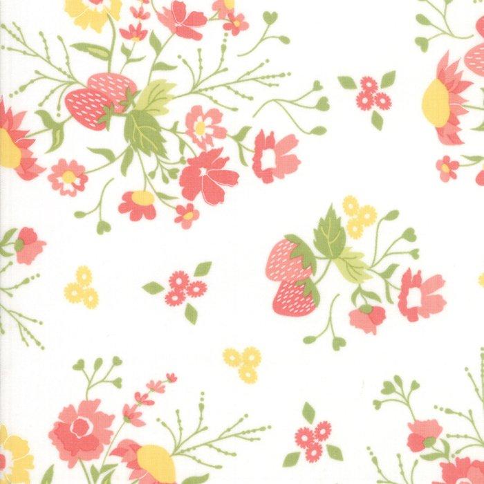 Strawberry Jam, Cloud 29060-11