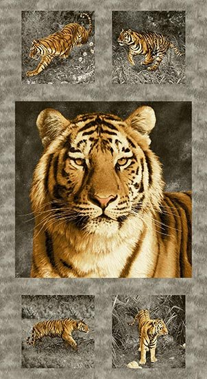 Tiger Kingdom Panel - A-8696-C