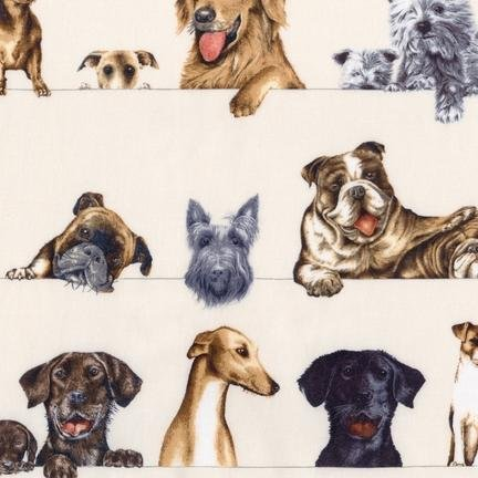 Curious Canines - 14255-14