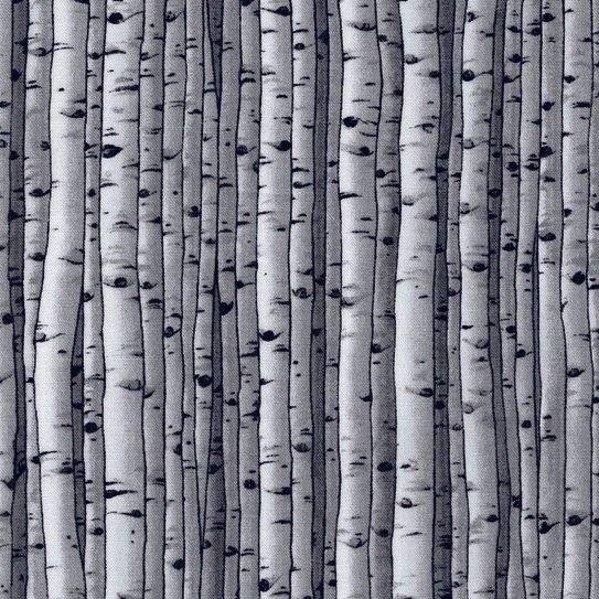Gray Birch Trees - 5065-92