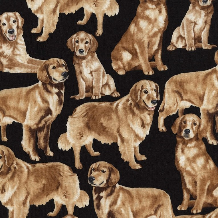 *Golden Retrievers  - C4892