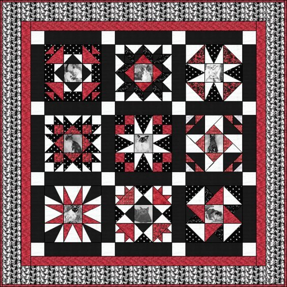 Sampler Quilt Pattern for Photo Transfers or Fussy Cuts - BOM60