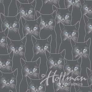Charcoal Gray/Silver Cats - P4347-55S