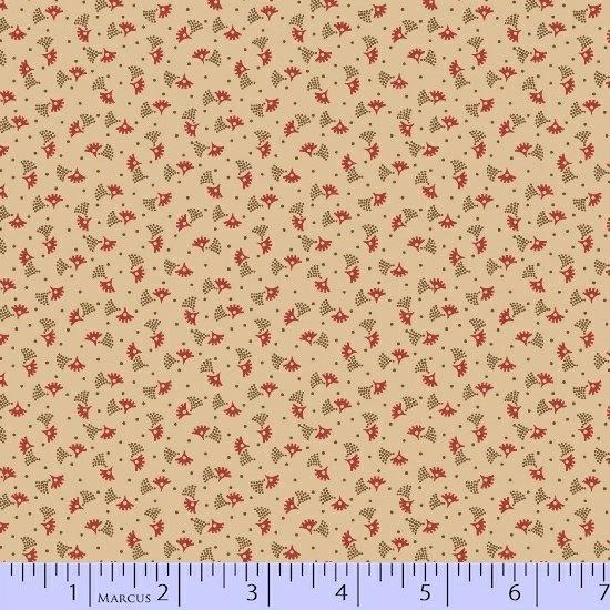 Antique Cotton 1738-0142