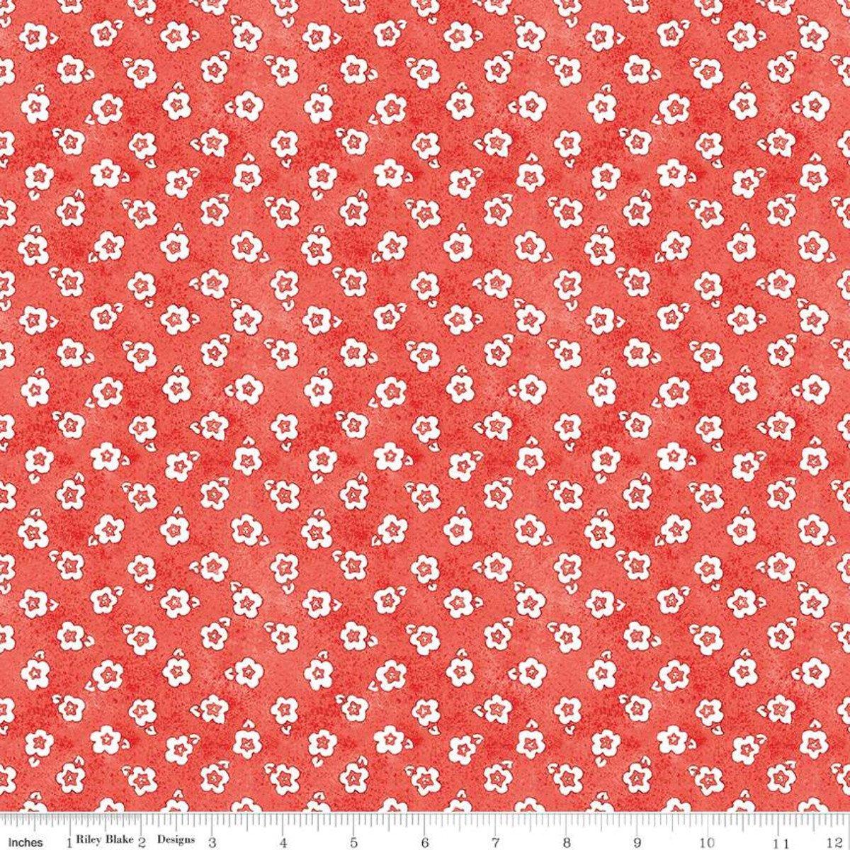 Painter's Palette C8941 Coral