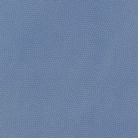 Spin Basics C5300 Blue