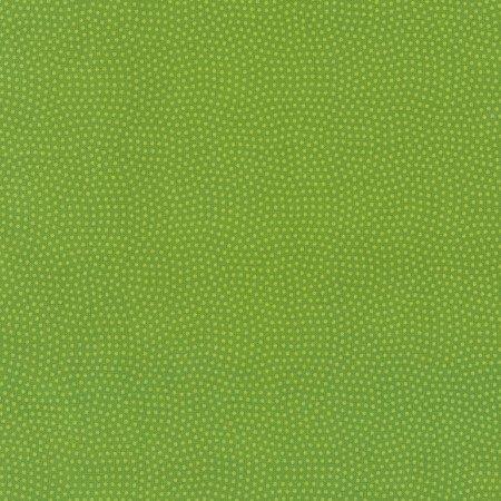 Spin Basics C5300 Lime