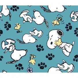 Snoopy & Woodstock 69399
