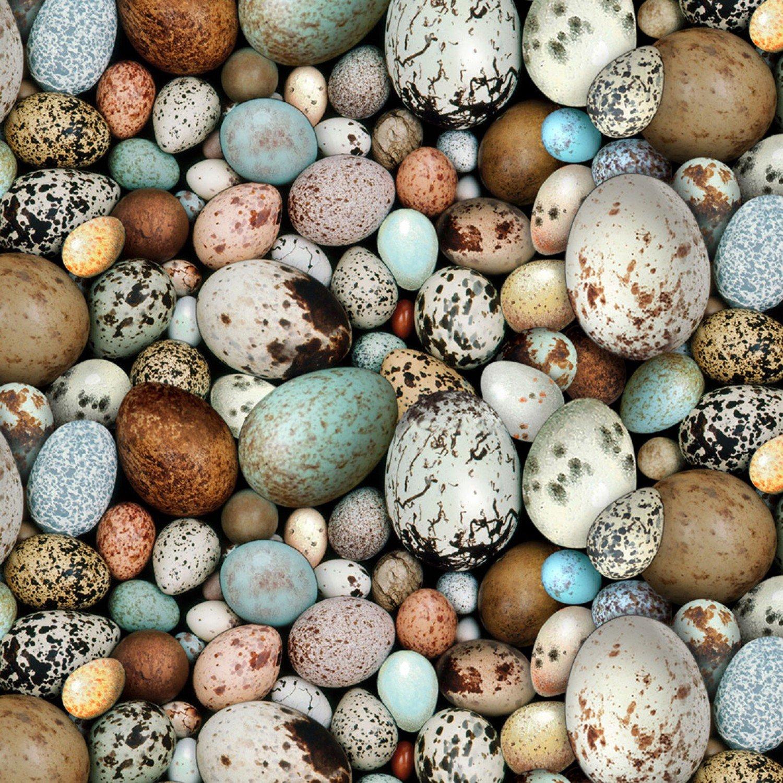 Multi Bird Eggs 7007E-MLT
