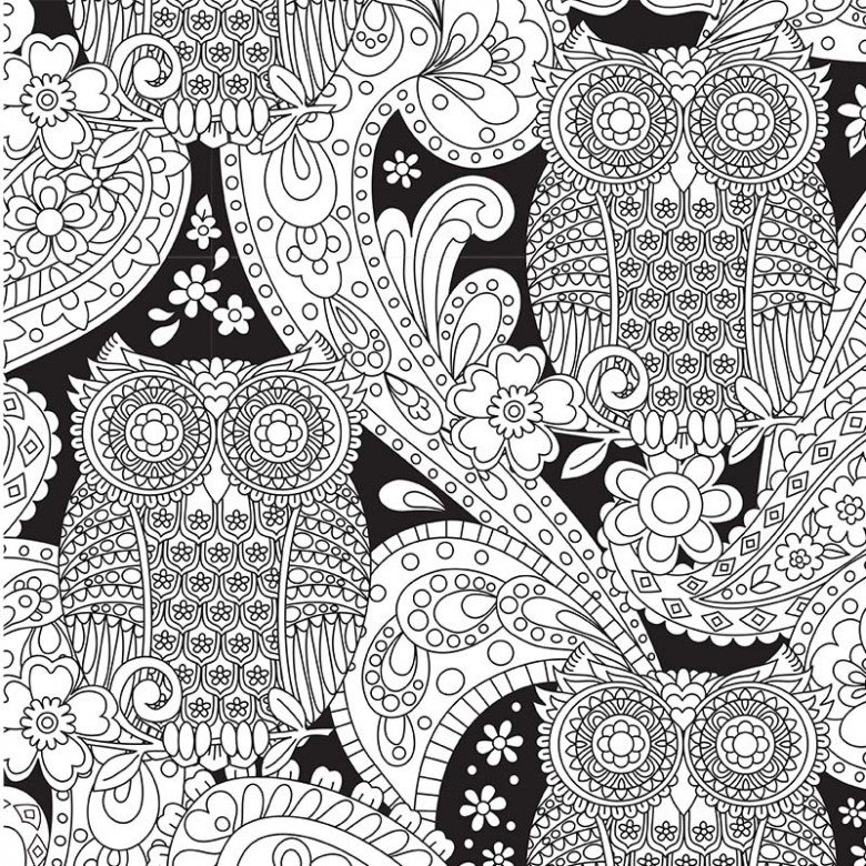Kit-Color Me Owls (fabric & markers)