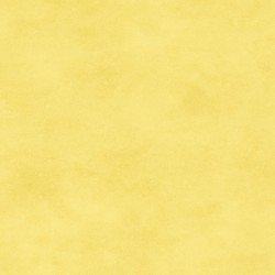 Shadow Play Snapdragon Yellow