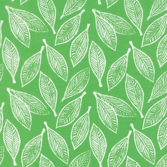 Horizon Leaves Green