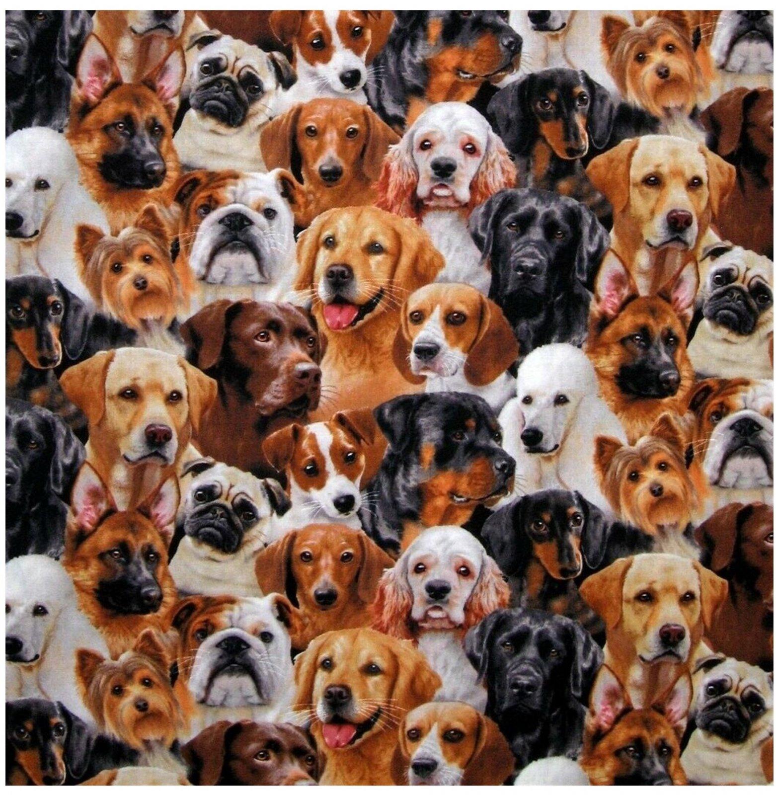 Dog Breeds 1312 Black