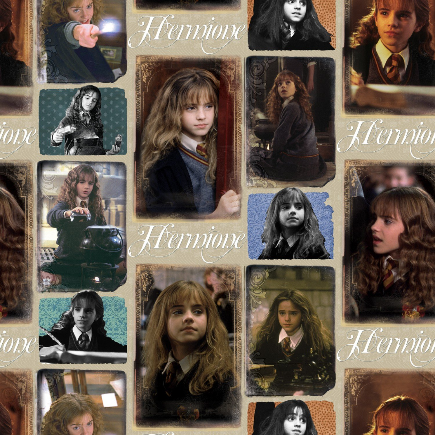 Hermione - Harry Potter Collection