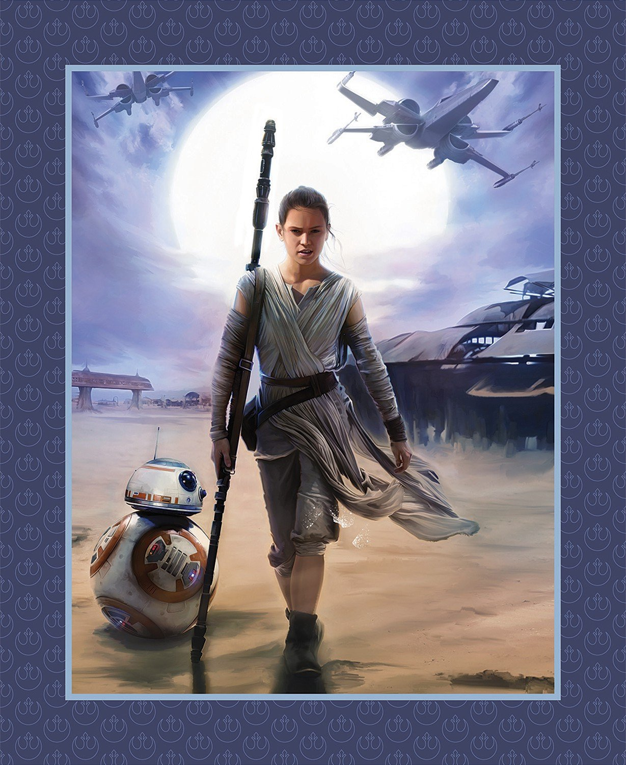 Star Wars Force Awakens - Rey Panel