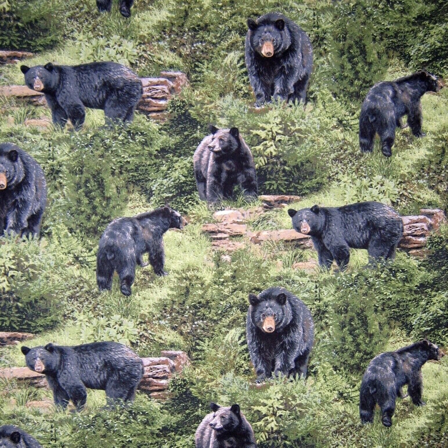 Born Free Bears 112 32001