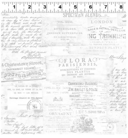Botanical Journal Y3243 116