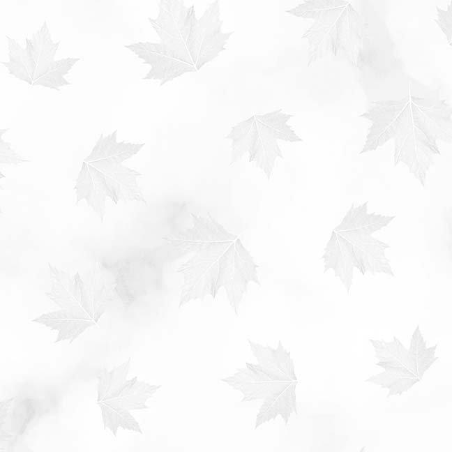 Maple Leaves Light Grey White Breeze CASS-DC5012 W90